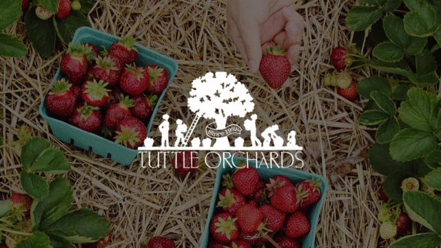 tuttle orchards